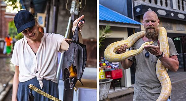 Vi lover – på trods af, at billederne her af Anne og Jesper på Bali kunne tyde på det modsatte, så er der hverken slanger eller flagermus på programmet i sommerworkshoppen. ;)
